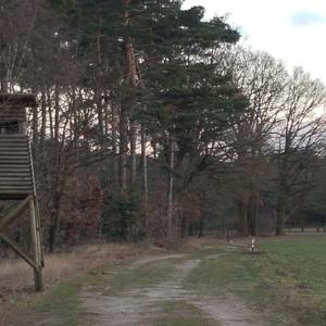 Am Kanal Bodenteicher Heide