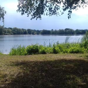 Markloher Seen