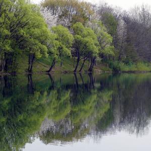 Am Fichtensee