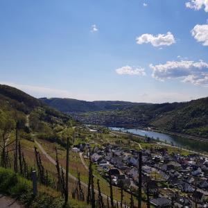 **Sommerstammi Koblenz**