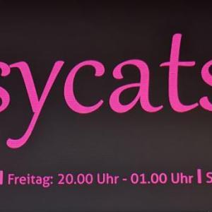 Bussycats