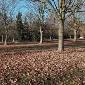 Vogelparkparkplatz