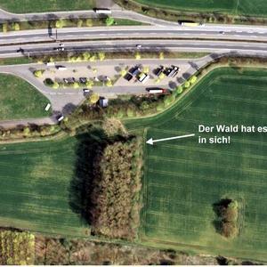 A42 Parkplatz Holthauser Bruch